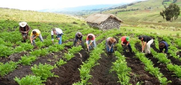 Política agraria común: Despierta el debate